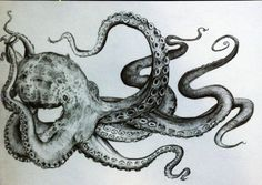 black and white, drawing, octopus, pencil, squid, street art