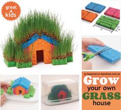 Grow your own grass house