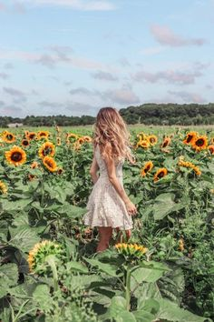 In search of beautiful sunflower fields in New York? Learn where to find sunflower fields in Long Island - located just outside NYC! #Newyork #sunflowers #sunflowerfields | New York travel | New York Sunflowers | Sunflower picture ideas | where to find sunflower fields in New York | Sunflower fields | Long Island Sunflowers | Long Island New York | Sunflower photography | Sunflower field photoshoot | Instagram photos | Long Island travel | Sunflower field outfit ideas | New York Summer Cute Poses For Pictures, Summer Pictures, Beach Photography Poses, Outdoor Photography, Sunflower Field Photography, Sunflower Field Pictures, Perspective Photography, Girl Photo Shoots, Instagram Pose