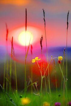 les plus beaux fonds d'écran paysage de la coucher de soleil hd gratuit