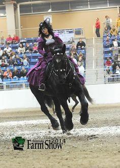 Glaedr at the Harrisburg Farm Show Arena 2015