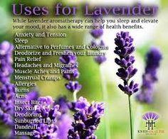 Uses for Lavender Signage
