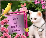 Have A Wonderful Weekend saturday saturday quotes saturday images saturday gifs Bon Weekend, Weekend Gif, Hello Weekend, Saturday Greetings, Evening Greetings, Morning Greetings Quotes, Saturday Images, Weekend Images, Happy Weekend Quotes