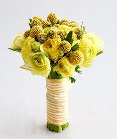 bouquet: city iris; photo: steve giralt