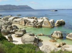 Boulders Beach in Simonstown South Africa.  Penguins!
