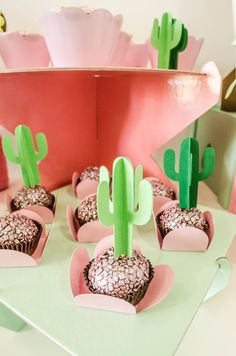 Feast Lama and Cactus of the Messenger (or Mesversary) of Baby Bela! Very cute … – Foods – Cactus Mexican Birthday Parties, 1st Birthday Party Themes, Mexican Party, 1st Birthday Parties, Birthday Party Decorations, Themed Parties, Birthday Ideas, Baby Cactus, Cactus Cake