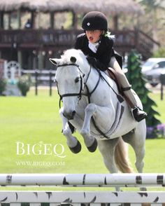 Got a pony hunter for sale? Sell your quality show ponies on Bigeq.com! Here's Bieber and Isabella White tackling the derby field today! #bigeq #hunterjumper #ponyhunter #ushja #usef #smallpony (at WEF - Winter Equestrian Festival)