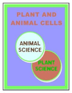 plant cells vs animal cells essay