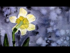 How to Create a Dark Background With Watercolor Artist Anne Abgott Watercolor Art Lessons, Watercolor Video, Watercolor Painting Techniques, Watercolor Pictures, Watercolour Tutorials, Watercolor Artists, Watercolor Flowers, Painting & Drawing, Watercolor Paintings
