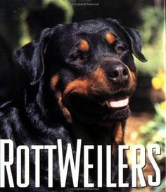 I Love Rottweilers...