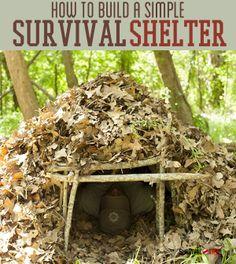 Emergency Shelter DIY | Basic #survivallife Skills www.survivallife.com