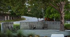 Front Yard Retreat - modern - landscape - Shades Of Green Landscape Architecture