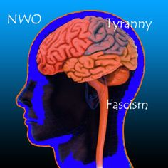 Activist Post: Reversing the Mental Side Effects of the New World Order