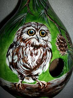 Gourd Birdhouse Baby Owl very Surprised at by SharonsCustomArtwork, $40.00
