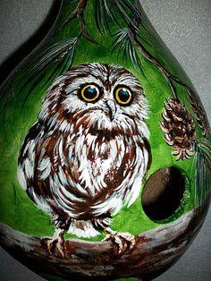 Made to Order / Gourd Birdhouse Baby Owl by SharonsCustomArtwork