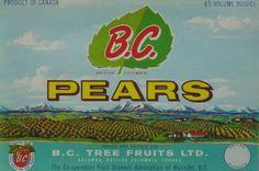 B.C. Vintage Pear Crate Label Kelowna, BC