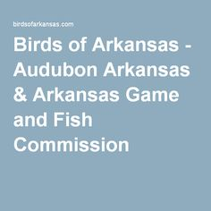 Arkansas traveler on pinterest arkansas little rock and for Arkansas game and fish commission