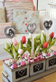 fun and easy valentine chocolate planters, container gardening, gardening, seasonal holiday decor, valentines day ideas