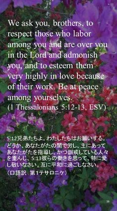 We ask you, brothers, to respect those who labor among you and are over you in the Lord and admonish you, and to esteem them very highly in love because of their work. Be at peace among yourselves.(1 Thessalonians 5:12-13, ESV)