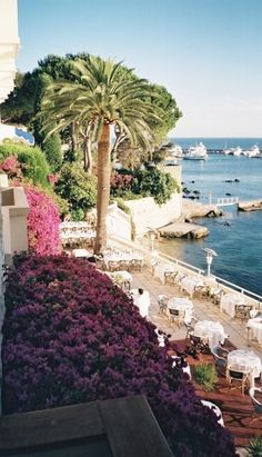 Juan-les-Pins ~ small coastal town ~ in the south of France