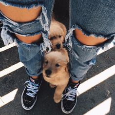 get these jeans here