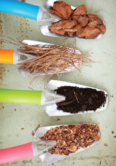 Learn about all the different kinds of mulch to keep your garden beautiful.