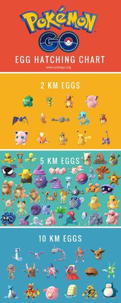 Egg Hatching Chart - Visit now for 3D Dragon Ball Z compression shirts now on sale! #dragonball #dbz #dragonballsuper