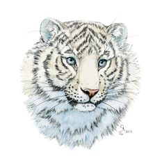 Young White Tiger Art Print by S-Schukina | Society6