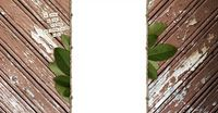 """Natural Beauty"" Free Blog Background by Shabby Blogs"