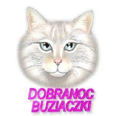 Animowane obrazki i gify na dobranoc: Animowane i gify na dobranoc kotki i pieski Cute Pictures, Cats, Dog Love, Gatos, Cat, Kitty, Kitty Cats