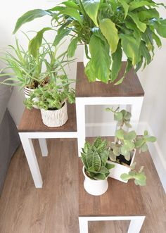 Extraordinary Diy Plant Stands Plant stands are very critical as far as decoration is concerned, people do observe the plant stand and it has a considerable impact on their mind set. There are various plant stands which you can find from your local market Tall Plant Stands, Modern Plant Stand, Wooden Plant Stands, Tall Plants, Hanging Plants, Indoor Plants, Indoor Gardening, Indoor Herbs, Indoor Outdoor