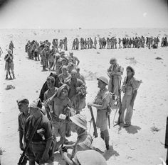BRITISH ARMY NORTH AFRICA 1942 (E 14621)   A line of German and Italian prisoners captured during the advance on the Ruweisat Ridge waiting for their rations, July 1942.