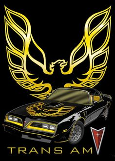 PONTIAC TRANS Am FireBird Cross Stitch Pattern***L@@K***  ~~ I SEND WORLD-WIDE ~~Free
