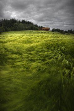 near Vik, Norway