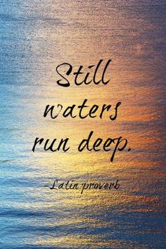 "Still waters run deep. #INTP.  I tell people all the time ""My Well Runs Deep"".  aka don't judge me.  You don't know me.  There's so much more than meets the eye."