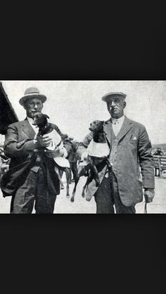 1930s whippet racing