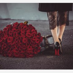 Red Roses for Romance