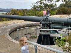 Princess Royal Fortress Military Museum — Google Local Cannon, Museum, Military, Princess, Google, Museums, Military Man, Army, Princesses