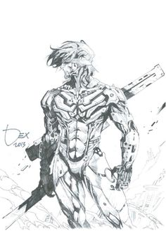 Dexter Soy - Raiden (Metal Gear Rising), in AndreChee