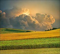 Summer sunset, Vojvodina, Serbia