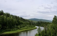 Fairbanks, Alaska a whole different world in the summer when temperature will soar to the 90's