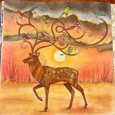 39 Best Coloring Deer Images On Pinterest