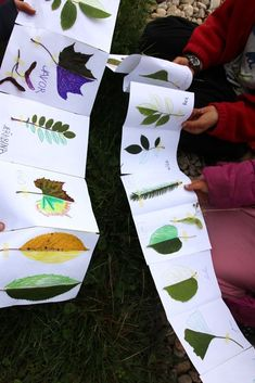 Listová leporela | Učíme venku Fall Crafts For Kids, Projects For Kids, Diy For Kids, Crafts To Make, Outdoor Education, Leaf Crafts, Forest School, Reggio Emilia, Nature Crafts