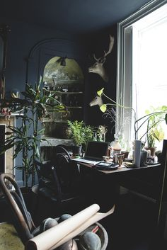 Dark Interior/ Grey