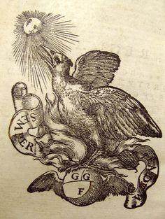 Woodcut Phoenix Ex Libris, Phoenix Bird, Tattoo Sketches, Various Artists, Ferrari, Graphic Design, Tattoos, Drawings, Illustration