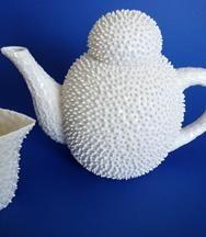 Nucleolus pofupofu - spiky teapot