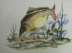 pg Fish Background, Carp Fishing, Fish Art, Wild Life, Places To Visit, 1, Tattoo, Painting, Animals