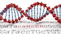 Cancer Sequencing Controls— Comparing a patient's tumor DNA sequence with that of her normal tissue can improve researchers' identification of disease-associated mutations.