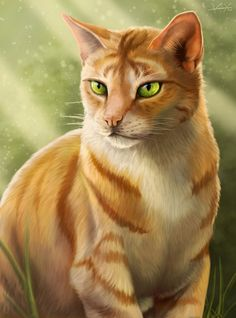 This is a beautiful picture of Fireheart. Lets have a moment of silence for the person who drew this...