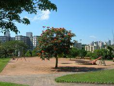 Espaços públicos estão diminuindo nas cidades alerta ONU